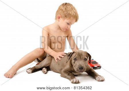 Boy playing with the puppy pitbull and fire machine