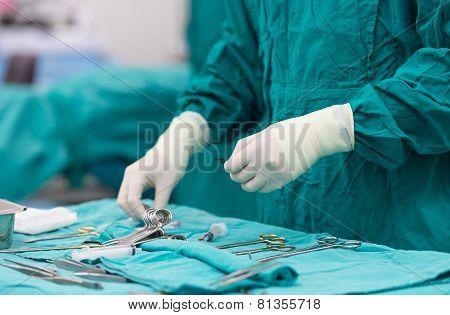 Scrub Nurse Preparing Medical Instruments For Operation