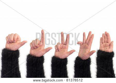 show of hands