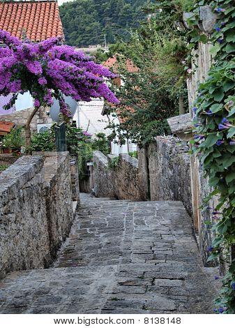 Straße in cavtat