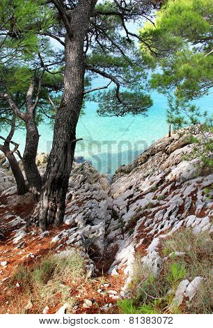Wild Beautiful Nature And Sea In Croatia
