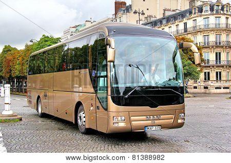 Man R08 Lion's Coach