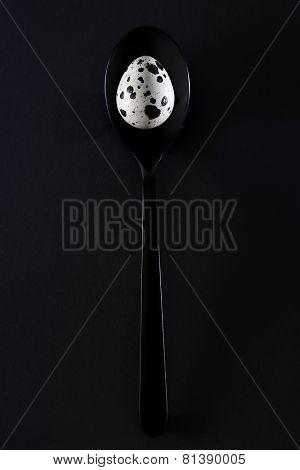 Quail eggs on black background