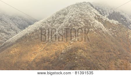 Frost On The Trees In The Mountains Qax Azerbaijan