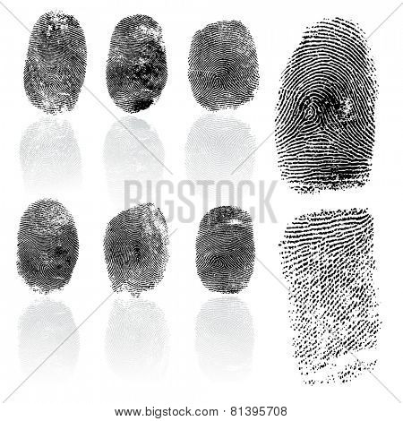 Set of fingerprints,  illustration isolated on white