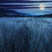 stock photo of moon-flower  - composite mountain summer landscape - JPG