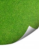 stock photo of turn-up  - Background texture of finely cut grass with a corner turned up - JPG