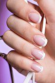 image of french manicure  - Beautiful woman - JPG