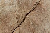 stock photo of uniqueness  - Unique old worn weathered wood, great for backgrounds