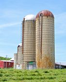 picture of silos  - Vertical image of two grain silos - JPG
