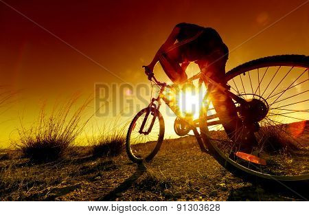 Sport and mountain bike