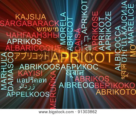 Background concept wordcloud multilanguage international many language illustration of apricot glowing light