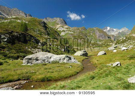 Summer Alpine Landscape