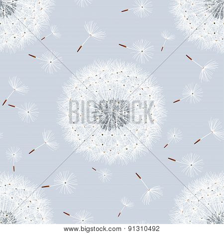 Seamless Pattern Grey With Flowers Dandelions