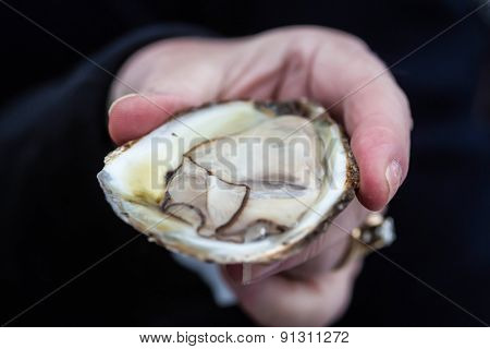 A person holding an opened raw oyster.