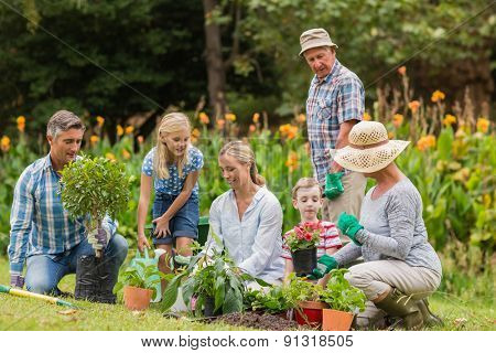 Happy family gardening on a sunny day