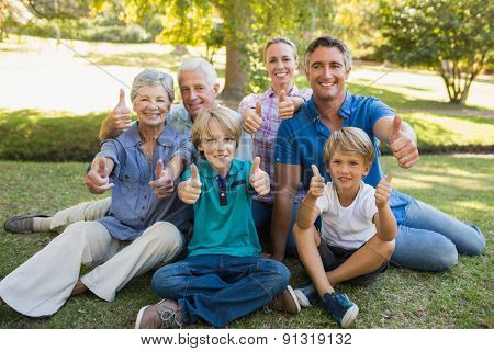 Happy family gesturing thumbs up in the park on a sunny day