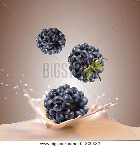 Beautiful blackberries and milk.