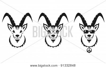 Chinese Symbol Vector Goat Illustration Image Design