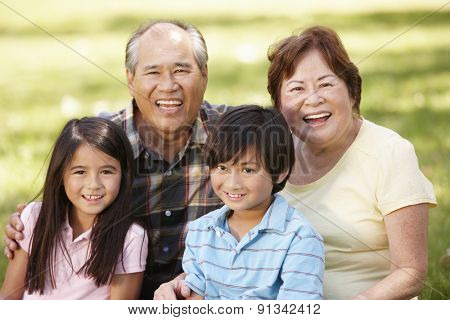 Portrait Asian grandparents and grandchildren in park