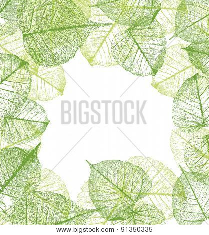 Fresh green leaves frame- vector illustration