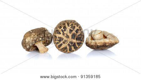 Dried Shiitake Mushrooms Isolated On White Background