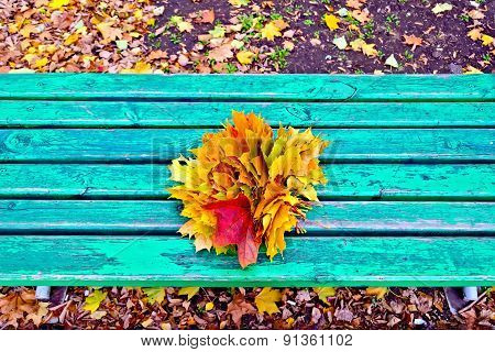 Maple leaves on bench