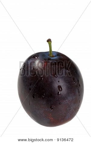 isolated wet plum