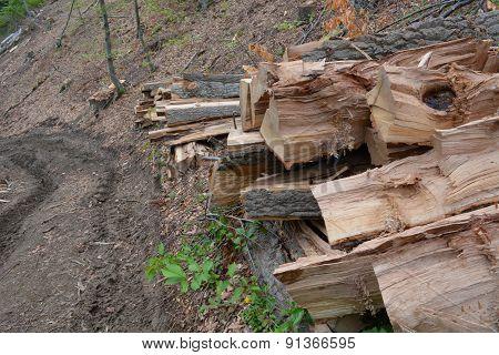 Logs Near Road