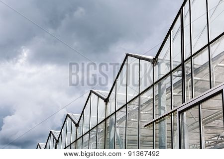Glass Facade Of A Huge Glasshouse