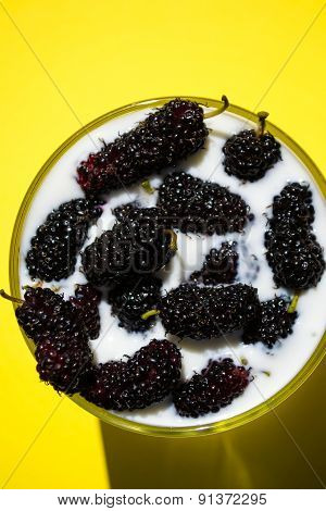 Glass Of Milk With Mulberry, Yellow Background
