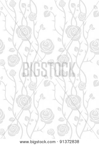 Roses seamless pattern. Floral vector background.
