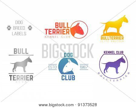 design logotypes, labels set of bull terrier dog breed for kennels, breeders, clubs isolated
