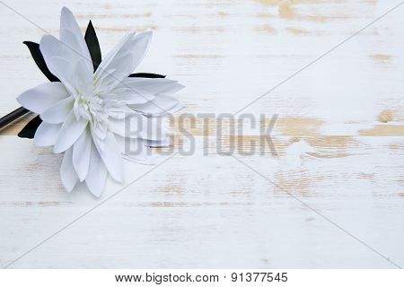 White Waterlily On White Rustic Wooden Background