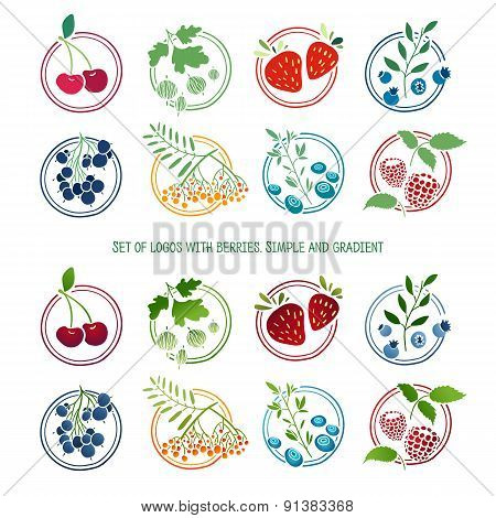 Set of logos, signs, badges, labels with berries and herbs. Simple color and gradient. Template desi