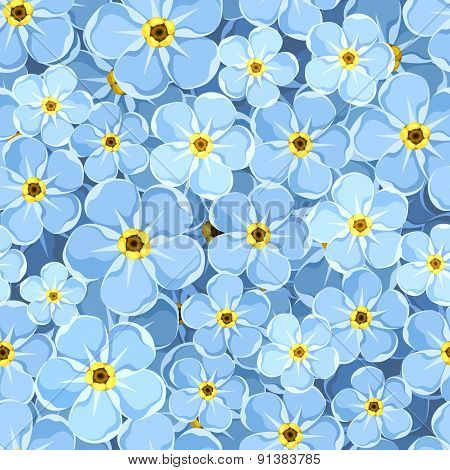 Seamless background with blue forget-me-not flowers. Vector illustration.