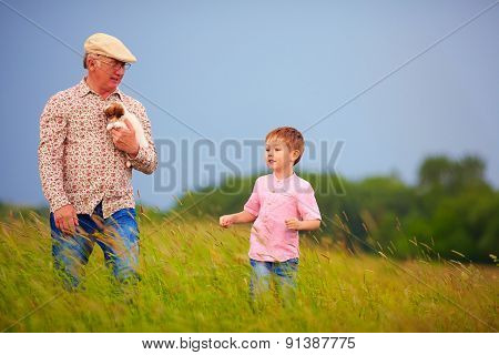Grandfather With Grandson Walking Through The Summer Field