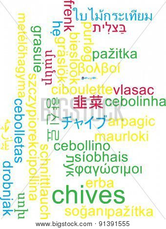 Background concept wordcloud multilanguage international many language illustration of chives
