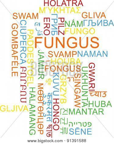 Background concept wordcloud multilanguage international many language illustration of fungus