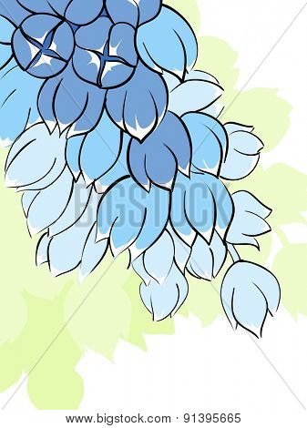 Illustration of flower on white background
