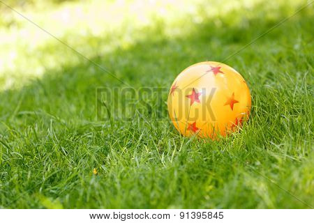 Colored rubber ball lying on grass