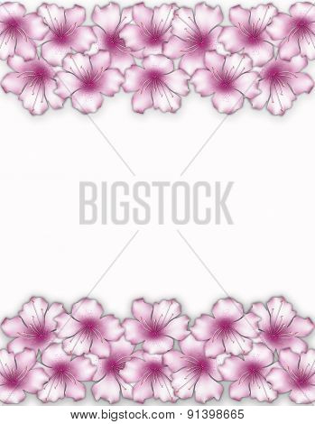 Flower Frame. Floral Border. Bouquet Of Pink Azalea Background.