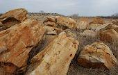 foto of wilder  - Scenic sandstone boulders in the desolate wilderness - JPG