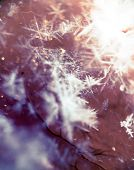 image of extreme close-up  - Extremely close up image of snowflakes vintage photo effect - JPG