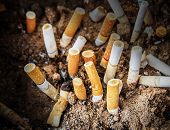 picture of butts  - Close up cigarettes butt in ashtray. health concept