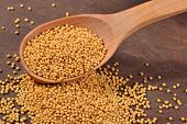 stock photo of mustard seeds  - White mustard seeds in a wooden spoon - JPG