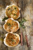pic of scallops  - Presentation of scallops au gratin baked with parsley - JPG