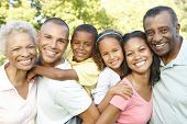 picture of multi-generation  - Multi Generation African American Family Relaxing In Park - JPG