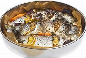 image of stuffed animals  - Cooking  fish - JPG