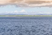 picture of larnaca  - Water Landscape of Larnaca Salt Lake - Cyprus Island ** Note: Soft Focus at 100%, best at smaller sizes - JPG